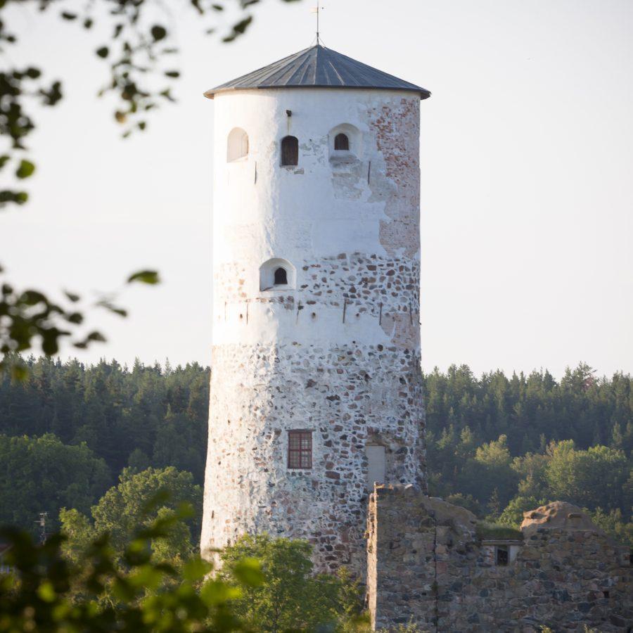 Stegeborg Slottsruin